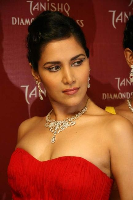 Tanishq Diamond Jewellery Designs For 2010