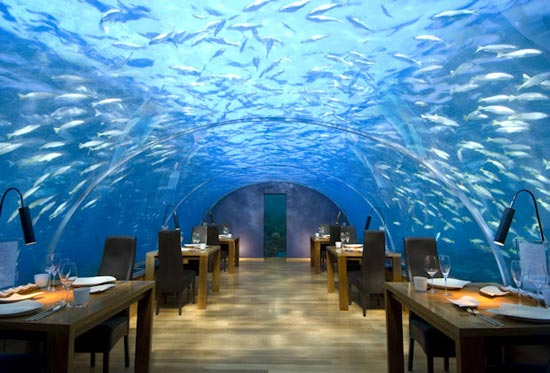 Maldives under water restaurant