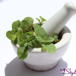 Mint-leaves-for-skin-glow