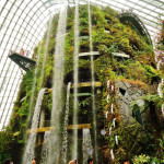 Pic-1-Cloud-Mountain-waterfall-singapore-550x733