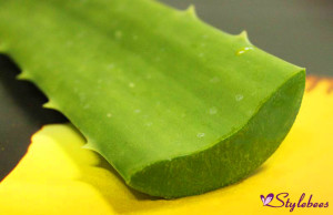Cure acne with aloe vera