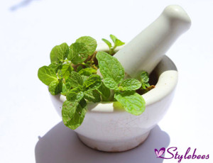 Mint leaves for blackhead removal and glowing skin