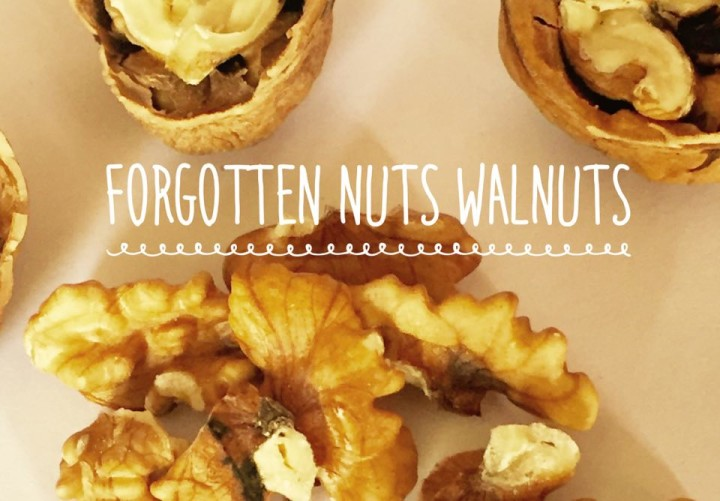 The Forgotten Walnuts…Good For Memory